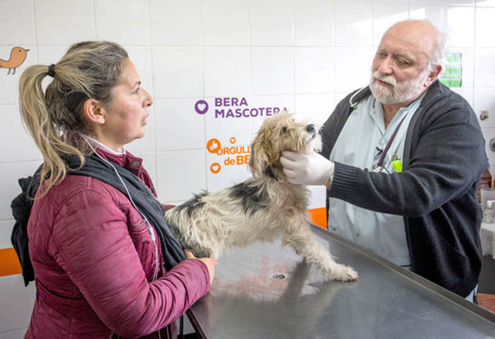 """""""Es vital que la gente vacune anualmente a su perro o gato contra la rabia"""""""