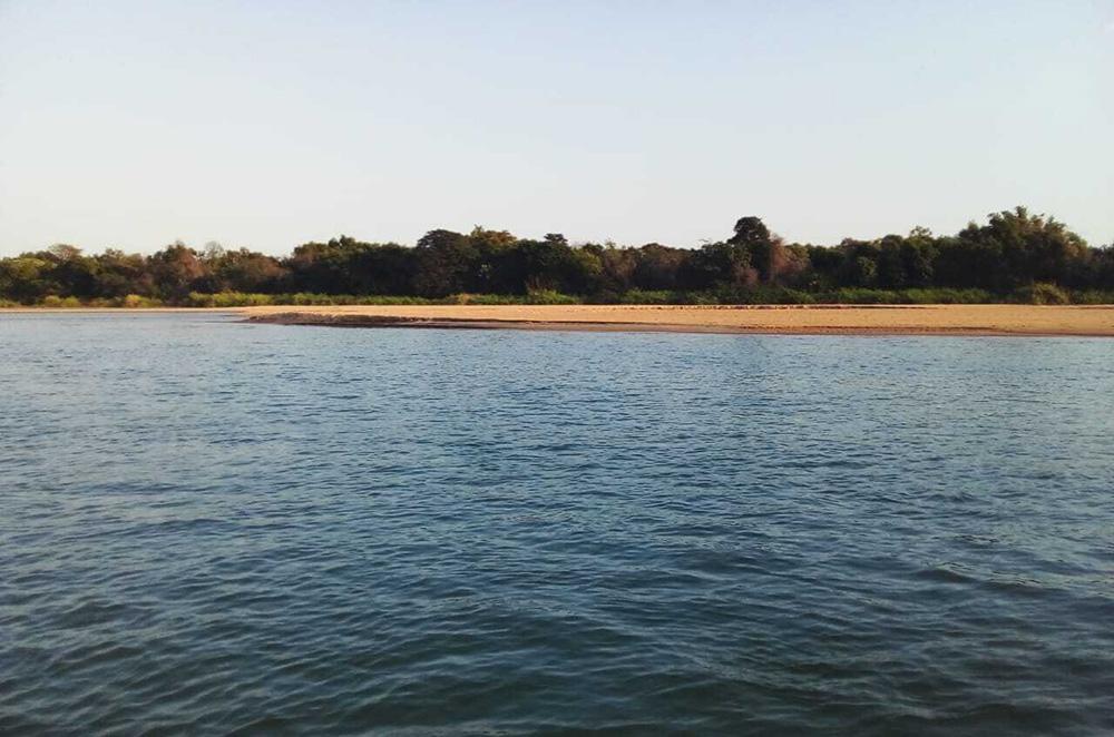 El hábitat de120 especies de peces está afectado por la bajante del río